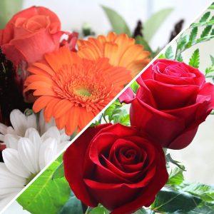 Roses & Gerberas