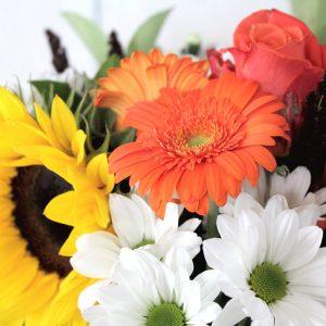 Spring Flower Delivery Online